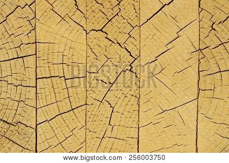 Wooden Texture Background.cropped Shot Of A Textured Background.wooden Texture. Wooden Background. T