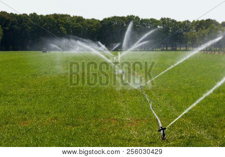 Irrigating Grassland In A Period Of Drought In The Summer In The Netherlands