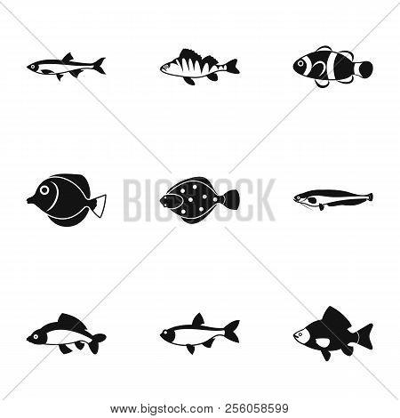 Species Of Fish Icons Set. Simple Illustration Of 9 Species Of Fish Icons For Web