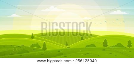 Sunny Rural Landscape With Hills And Fields At Dawn. Summer Green Hills, Meadows And Fields, Blue Sk