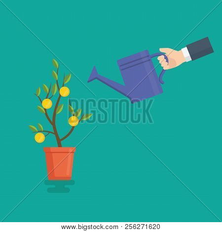 People Hand Watering Money Tree, Watering Can And Money Tree, Money Investment Concept