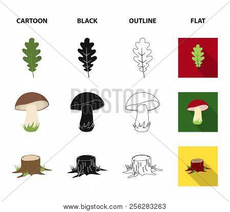 Oak Leaf, Mushroom, Stump, Maple Leaf.forest Set Collection Icons In Cartoon, Black, Outline, Flat S