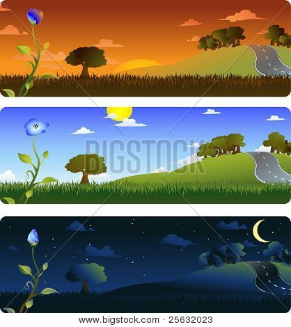 Frames representing the evolution of a flower at sunrise, afternoon and night. Each frame on separate layers, easily editable. Vector EPS 8. Radial and linear gradients used.