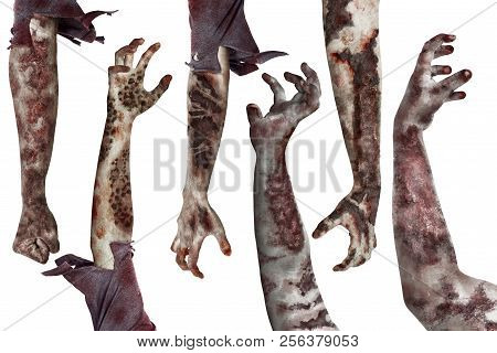 Set Of Dirty Zombies Hand With Different Posing Isolated Over White Background
