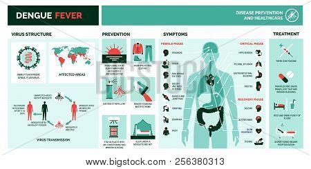 Dengue Virus Infographic: Virus Structure, Transmission, Prevention, Symptoms And Treatment
