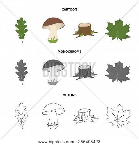 Oak Leaf, Mushroom, Stump, Maple Leaf.forest Set Collection Icons In Cartoon, Outline, Monochrome St