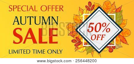 Limited Time Only Autumn Sale Banner Horizontal. Cartoon Illustration Of Vector Limited Time Only Au