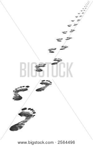 Ногой шаги