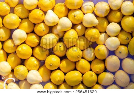 Bright Yellow Citrus Fruits Background Concept Pattern