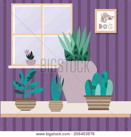 Interior With Flowers. Cactus And Tropical Flowers In Flowerpots. Home Modern Apartment Design . Pai