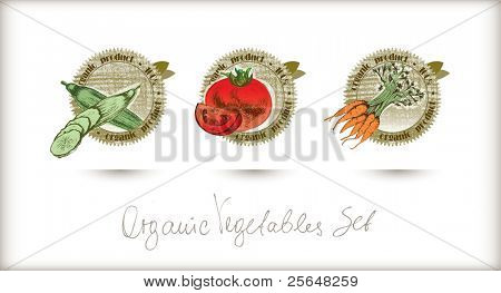 Vector organic labels set. Very detailed hand drawn with high quality.