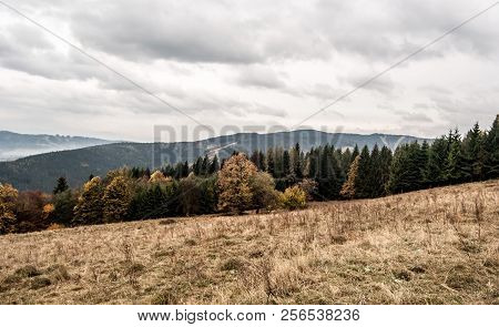 Autumn Mountains With Mountain Meadow, Colorful Trees, Hills And Clouds - On Mala Kycera Hill In Mor