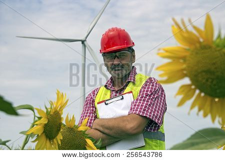 Worker wearing red hardhat and yellow jacket, standing in sunflower field against wind turbine. Portrait of middle aged man in hard hat looking at camera. poster