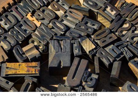 Wood Type