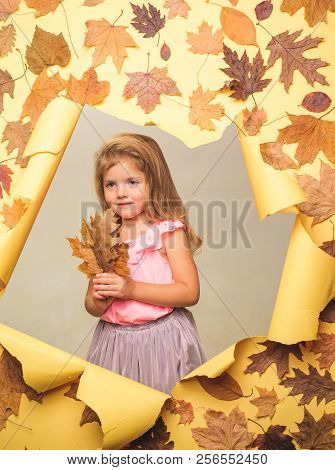 Autumn Tree And Forest. Autumn Clothing And Color Trends. Hello September. Happy Childhood. Branding