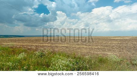 Landscape Of Rural Field With Green Hills On The Horizon. Blue Sky With Big White Clouds. Empty Agri