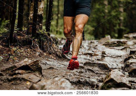 Wet Feet Runner Athlete Running On Trail Stones In Forest