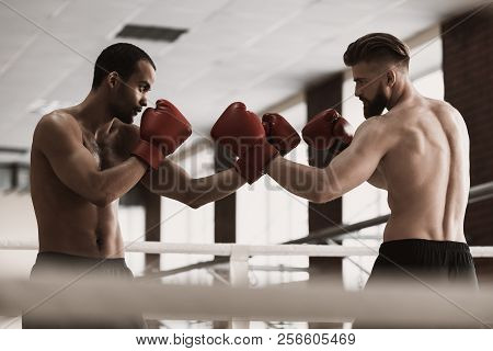 Two Male Boxers During Sparring On Boxing Ring. Two Strong Muscular Man Wearing Red Boxing Gloves Ab