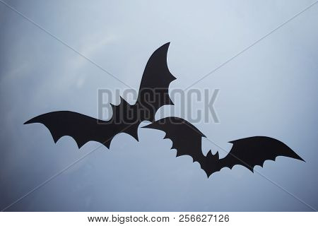 A Bat On The Window, An Ornament For Halloween.
