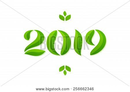Happy New Year 2019 Eco Leaves Greeting Card Design Vector