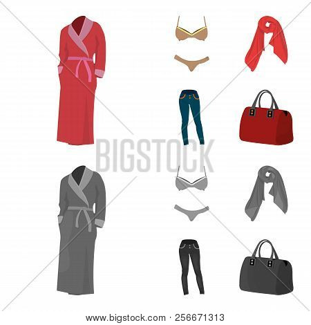 Bra With Shorts, A Women S Scarf, Leggings, A Bag With Handles. Women S Clothing Set Collection Icon