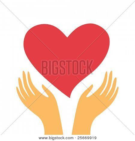 corazón rojo en las manos de un fondo blanco