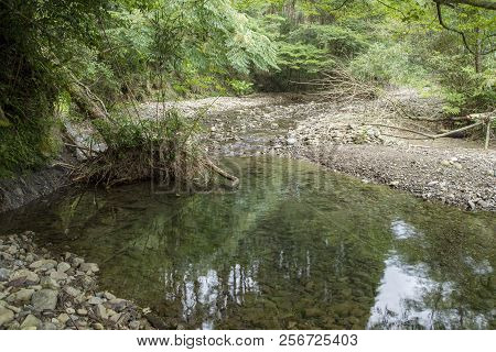 Thin Gentle Brook Flowing Between Pebble River Beach In Front Of Green Forest In Kagoshima