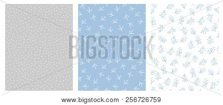 Hand Drawn Floral And Dots Abstract Vector Patterns. Light Blue, Grey And White Backgrounds. Tiny Wh