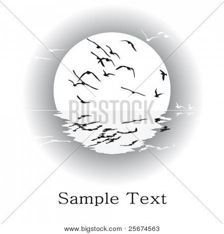Silhouette of seagulls, vector black-and-white card.