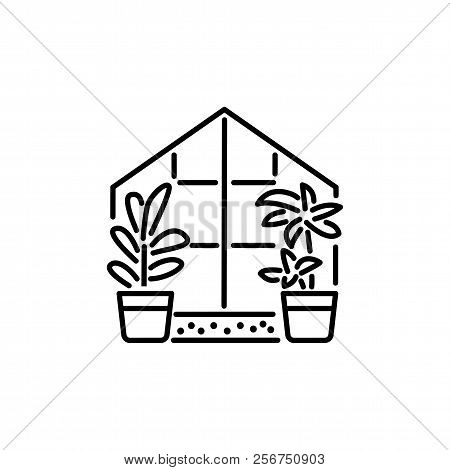Black & White Vector Illustration Of Glass Conservatory With Decorative Home Plants In Containers. L
