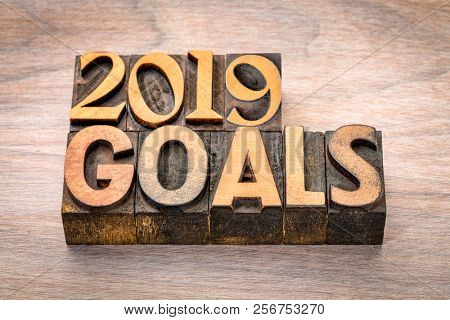 2019 goals banner - New Year resolution concept - text in vintage letterpress wood type printing blocks against grained wood