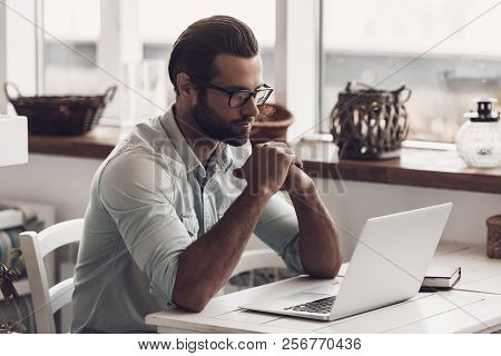 Young Man Sitting In Cafe And Working On Laptop. Portrait Of Handsome Bearded Business Man Sitting A