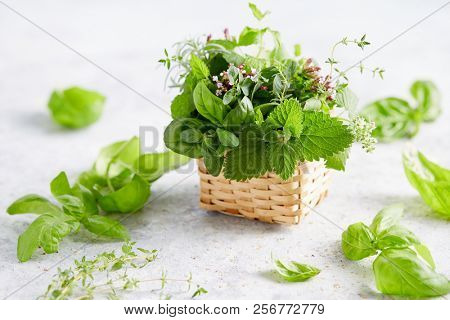 Assorted herbs in small wicker basket. Basket full of fresh summer herbs.