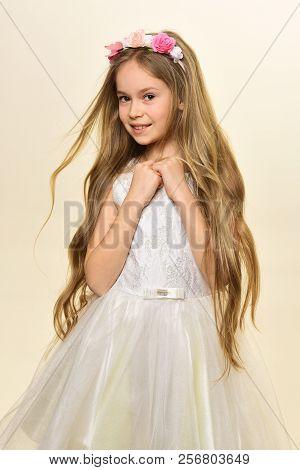 Healthy Hair. Healthy Hair Of Little Beauty. Small Girl Has Healthy Hair. Healthy Hair Concept. Beau