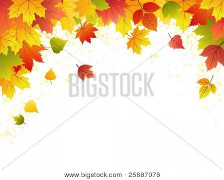 Autumn leave sbackground