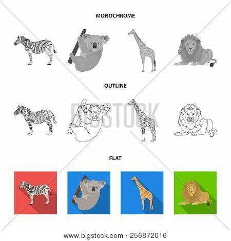African Zebra, Animal Koala, Giraffe, Wild Predator, Lion. Wild Animals Set Collection Icons In Flat