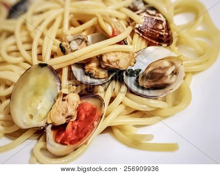 Spaghetti With Tiny Baby Clams In The Shell. Restaurant And Healthy Food Concept