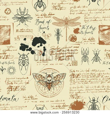 Vector Seamless Abstract Background With Insects. Beetles, Moths, Dragonflies, Ink Stains, Doodles A