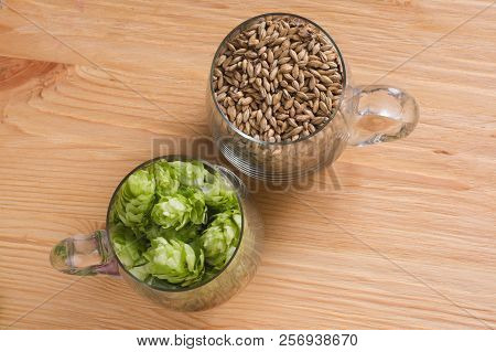 Cones of hops and chocolate malt in glass mug, closeup. Ingredient in craft beer brewing from grain barley malt. Ale or lager from pilsner malt. poster