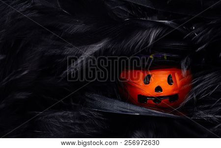 Halloween Festival Head Doll Pumpkins  Haunted Spooky Hide In The Black Feathers . Blank Space Avail