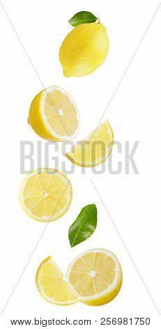Falling Fresh Lemon Isolated On White Background
