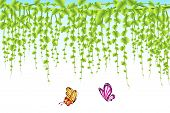 illustration of butterfly flying with hanging creeper background poster