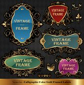 Vector set of Color luxury ornate frames poster