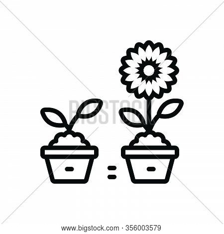 Black Line Icon For Improve Recover Rectify Retouch Renovate Ameliorate Develop Progress Plant Flowe
