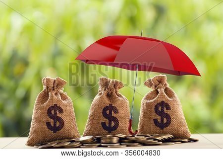 Risk Protecting, Wealth Management And Long Term Money Investment, Financial Concept: Arrange Coins