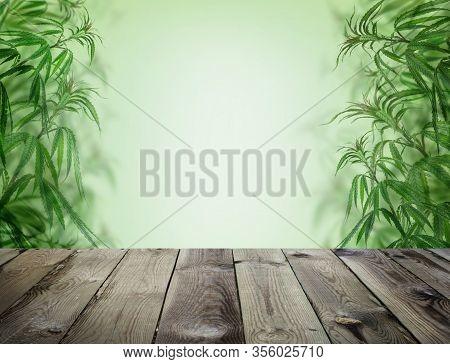 Green Cannabis With Wooden Background, Cultivation Vegetation Marijuana Plants,  Marijuana Leaves An