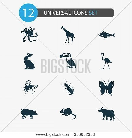Zoo Icons Set With Pig, Mouse, Thermit And Other Rhinoceros Elements. Isolated Vector Illustration Z