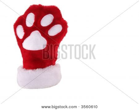 Red and white christmas stocking with paw print isolated poster