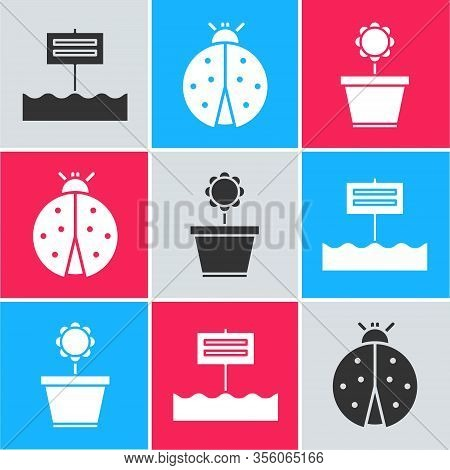 Set Blank Wooden Sign Board, Ladybug And Flower In Pot Icon. Vector
