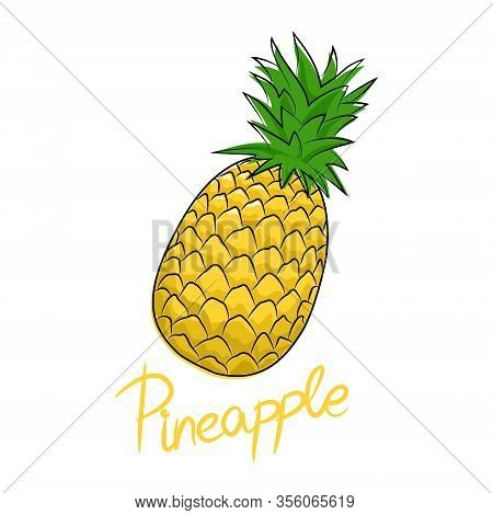 Ananas And Text Pineapple , Tropical Fruit Isolated On White Background, Vector Illustration